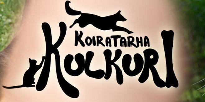 Facebookissa Kulkuri joutuu pyytämään lahjoituksena puutavaraa, tuulensuolevyjä ja villaa! Nyt eivät Kulkurin ja kissatalon tilat Palosaarella täytä kaikilta osin eläinsuojeluasetuksen vaatimuksia.